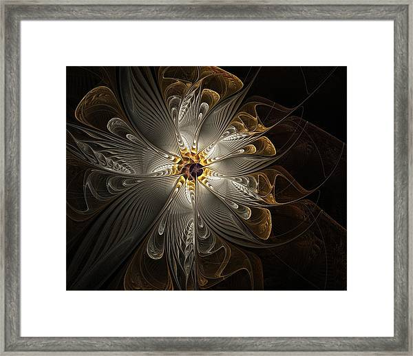 Rosette In Gold And Silver Framed Print