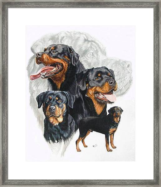 Rottweiler Medley Framed Print