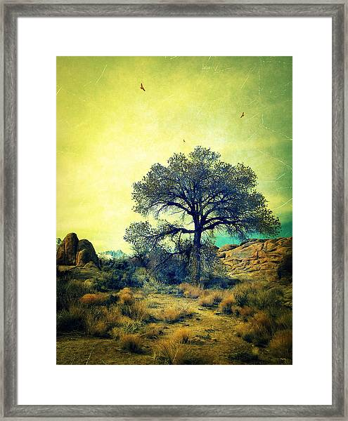 Rough Terrain Framed Print