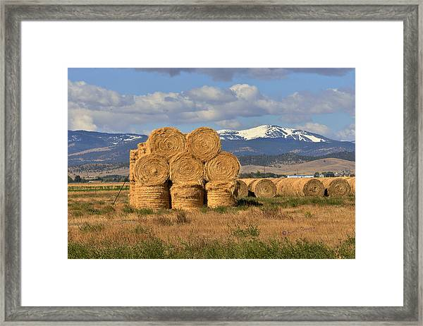 Round Hay Bales And Mountain Framed Print
