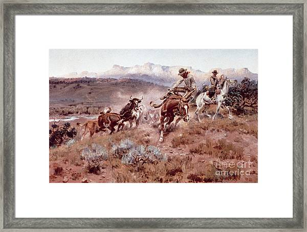 Round Up On The Musselshell  Framed Print