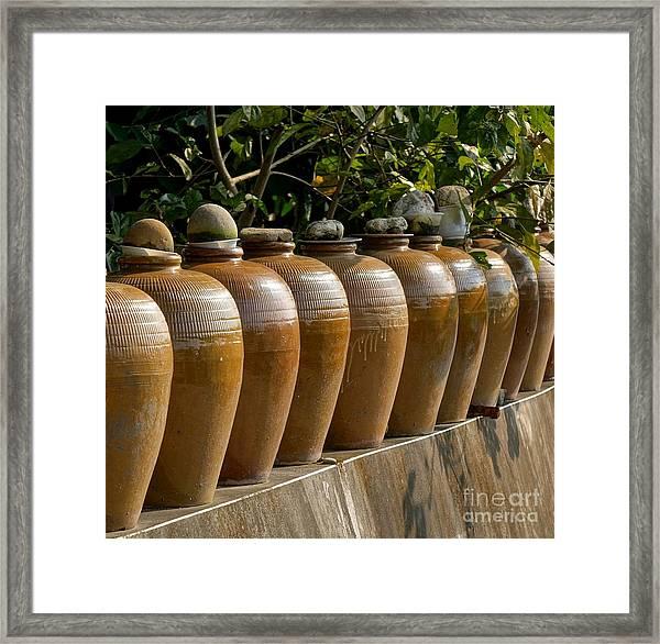 Row Of Pickling Jars Framed Print