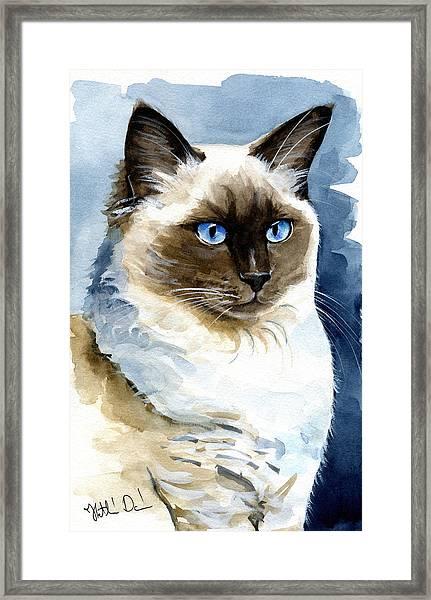 Roxy - Ragdoll Cat Portrait Framed Print