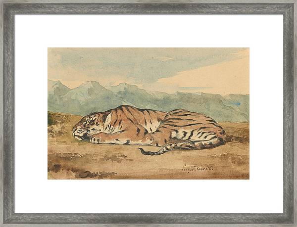 Royal Tiger Framed Print