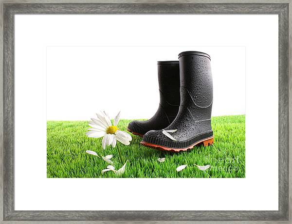 Rubber Boots With Daisy In Grass Framed Print