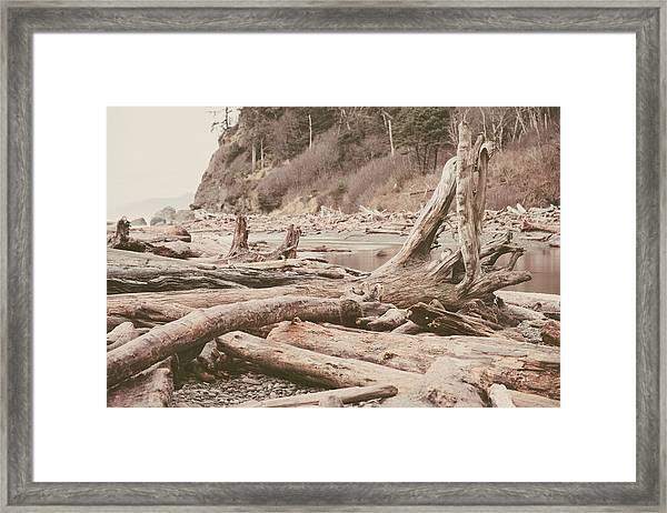 Ruby Beach No. 9 Framed Print