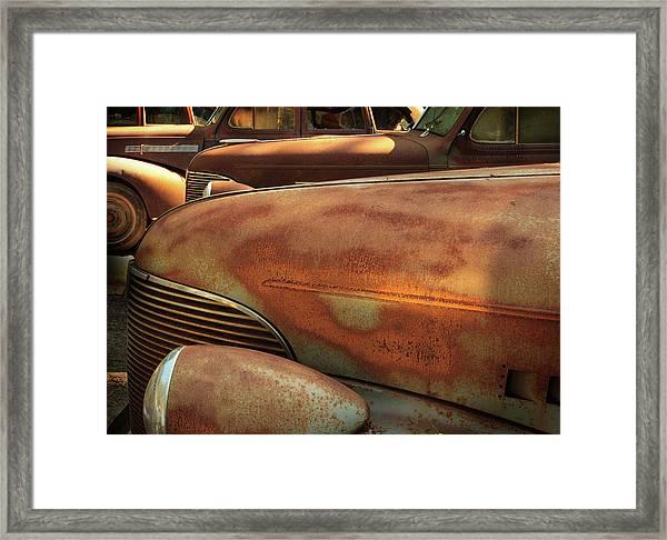 Ruddy Rover Framed Print