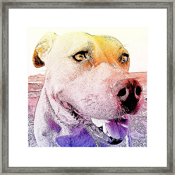 Rudy Framed Print