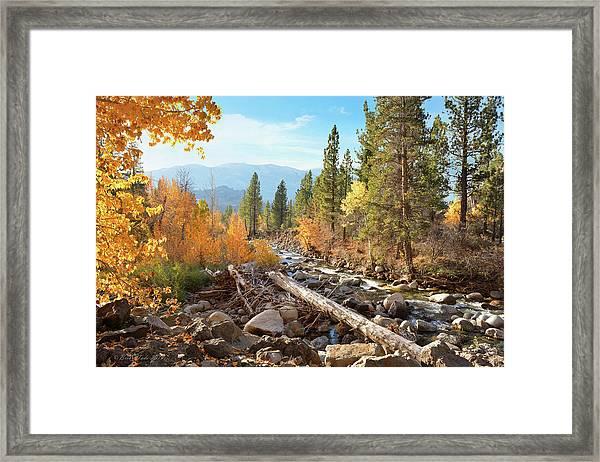 Rugged Sierra Beauty Framed Print