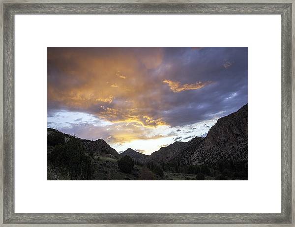 Run To The Hills Framed Print by Darryl Wilkinson