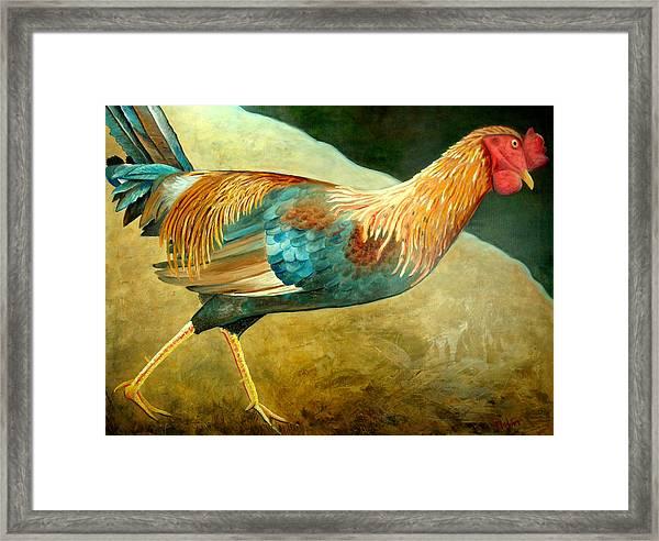 Running Rooster Framed Print by Scott Plaster