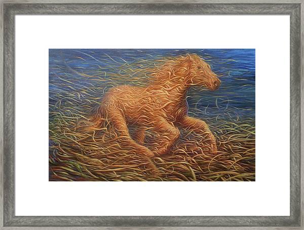 Running Swirly Horse Framed Print