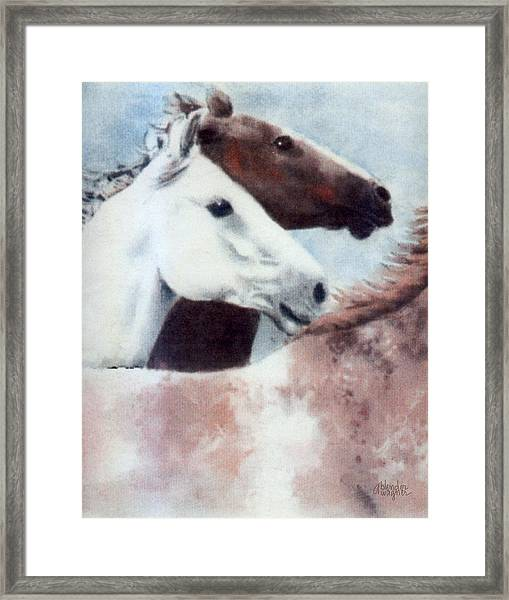 Running Wild And Free Framed Print