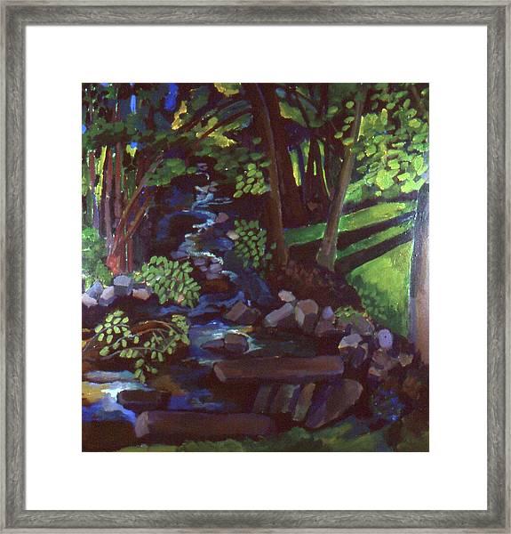 Runoff Stream Framed Print by Doris  Lane Grey