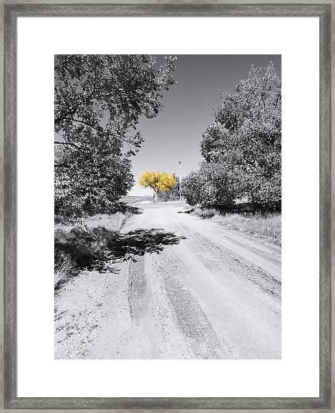 Rural Autumn Splash Framed Print