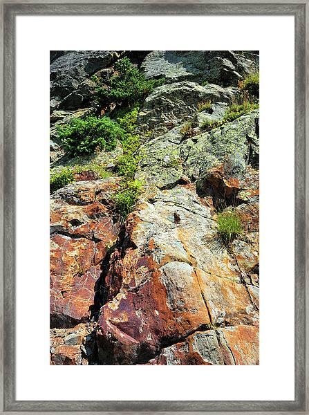 Rusty Rock Face Framed Print
