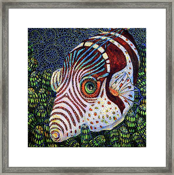 Dreamtime Saddled Puffer Framed Print