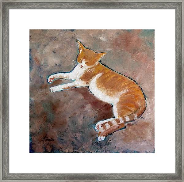 Saddle Tramp- Ranch Kitty Framed Print
