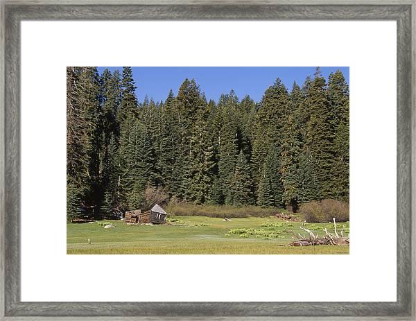 Sagging Cabin - Frog Meadow Framed Print