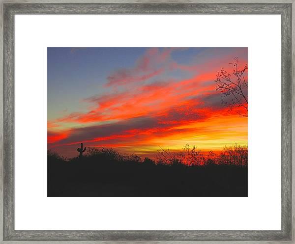 Saguaro Winter Sunrise Framed Print