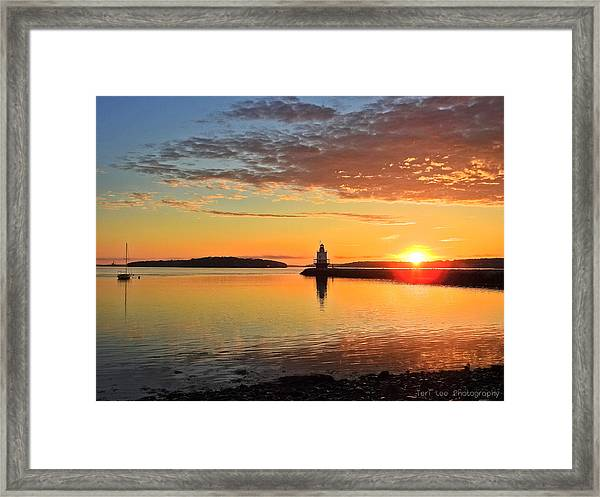 Sail Into The Sunrise Framed Print