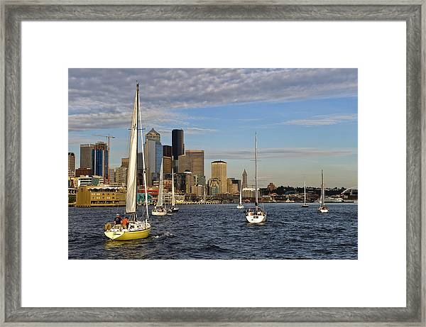 Sail Seattle Framed Print by Tom Dowd