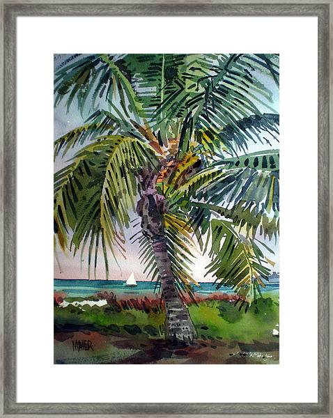 Sailboat In The Keys Framed Print by Donald Maier