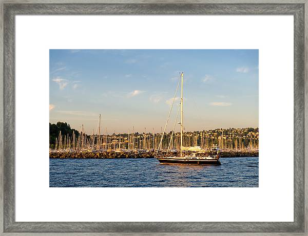 Sailboat Marina Framed Print by Tom Dowd