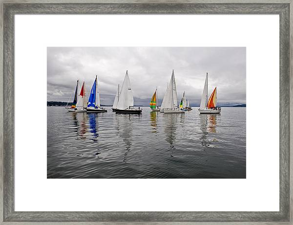 Sailboat Race Seattle Framed Print by Tom Dowd