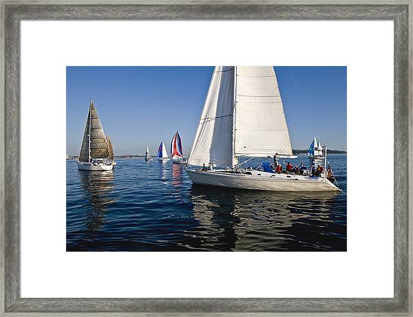 Sailboats Framed Print by Tom Dowd