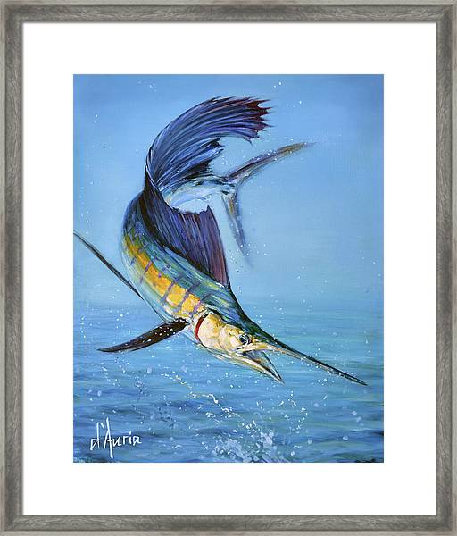 Sailfish In Storm Framed Print