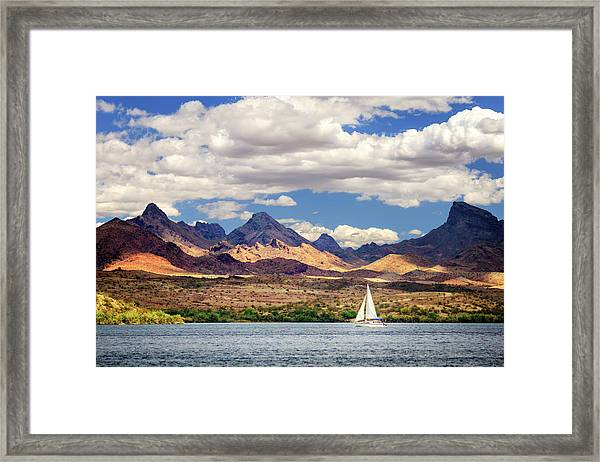 Sailing In Havasu Framed Print