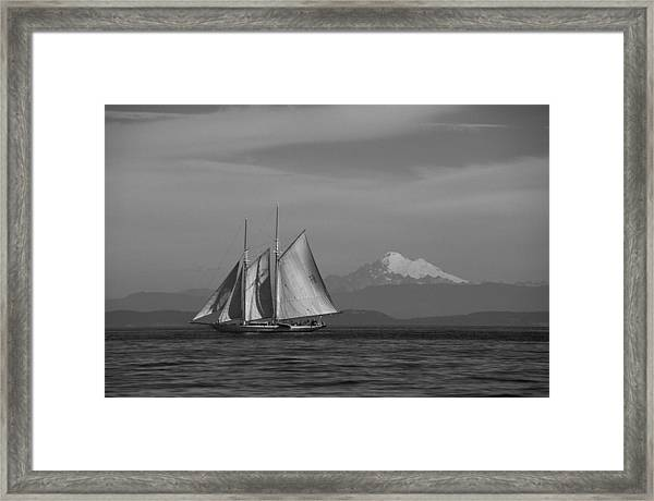 Sailing In Pacific Northwest Framed Print