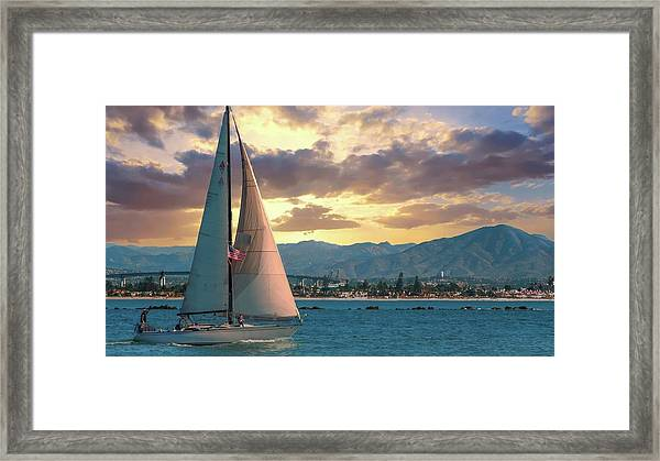 Sailing In San Diego Framed Print