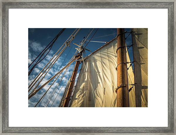 Sails In The Breeze Framed Print