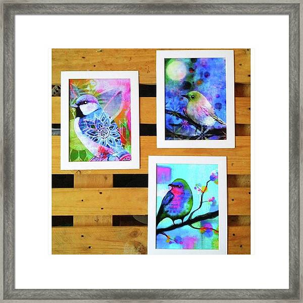 *sale* 3 11 X 14 In. Bird Prints With Framed Print