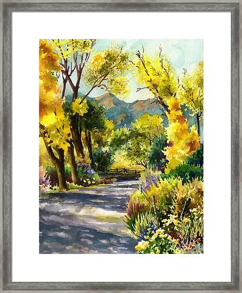 Salida Country Road Framed Print