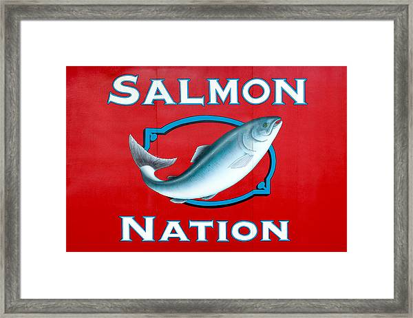Salmon Nation Framed Print