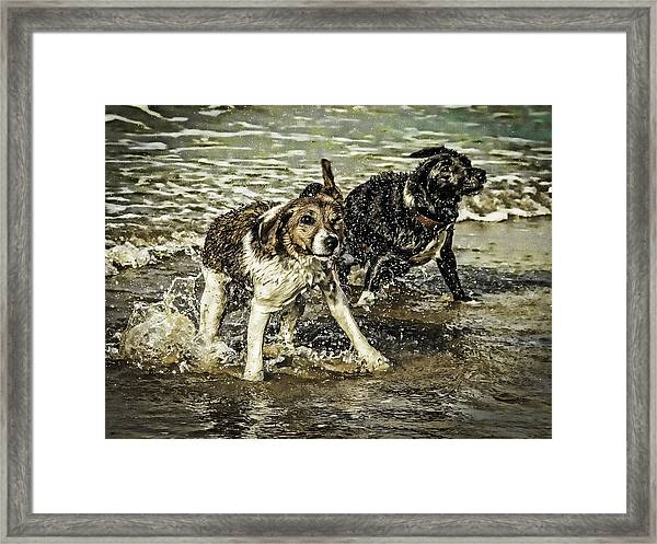 Framed Print featuring the photograph Salt And Shake by Nick Bywater