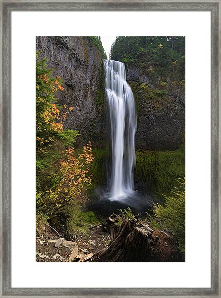 Salt Creek Falls Framed Print