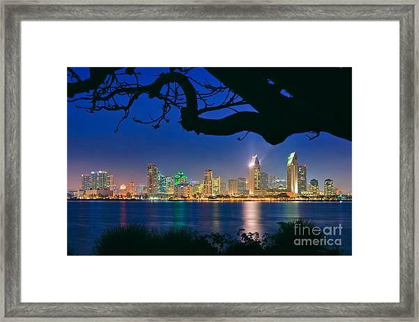 San Diego Skyline From Bay View Park In Coronado Framed Print