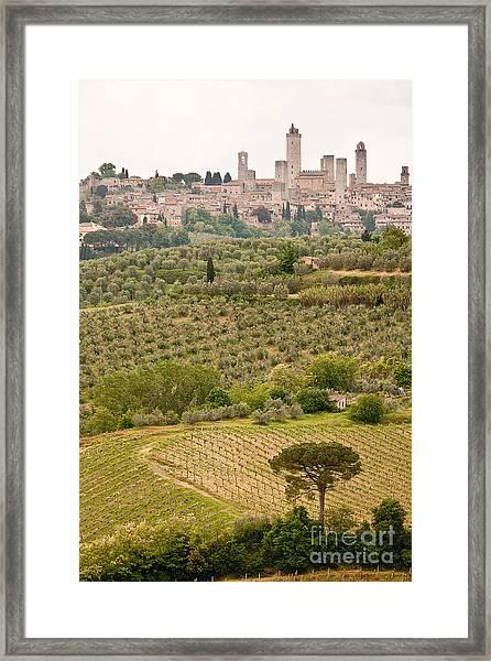 San Gimignano II Framed Print