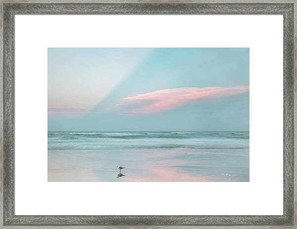 Sanctuary Framed Print