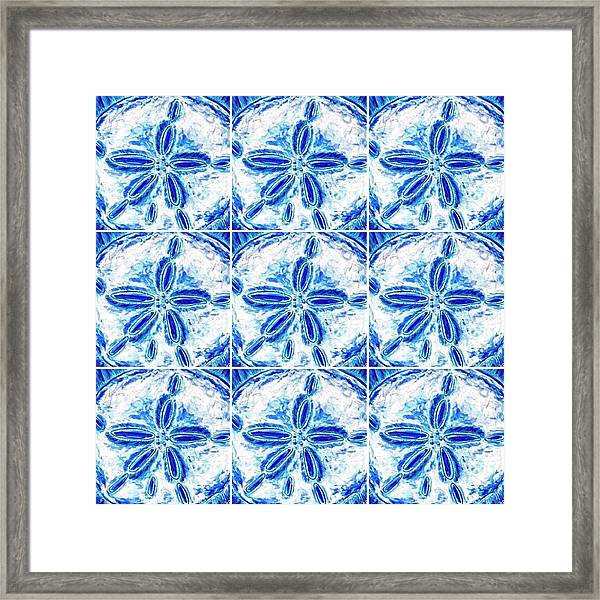 Sand Dollar Delight Pattern 3 Framed Print