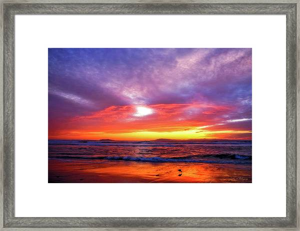 Sandpiper Sunset Ventura California Framed Print