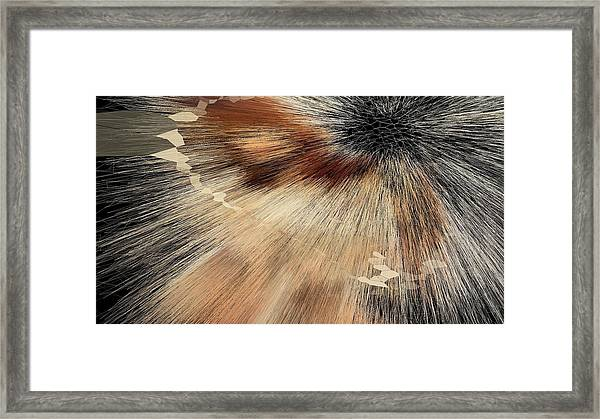 Sandy Light Speed Framed Print