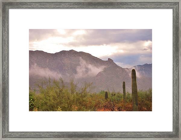 Santa Catalina Mountains II Framed Print