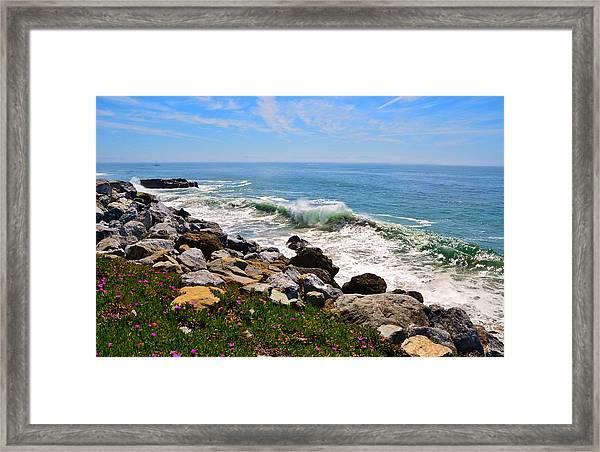 Santa Cruz Surf Framed Print