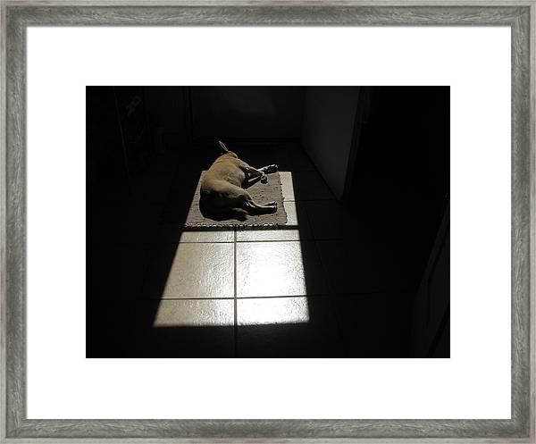 Sara Soaking Up Sunshine Framed Print