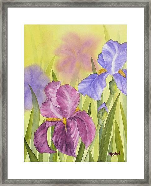 Sara's Garden Framed Print